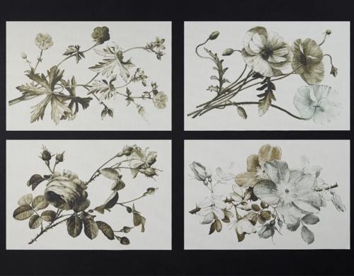 placemats_flowers_table_plants_placemats